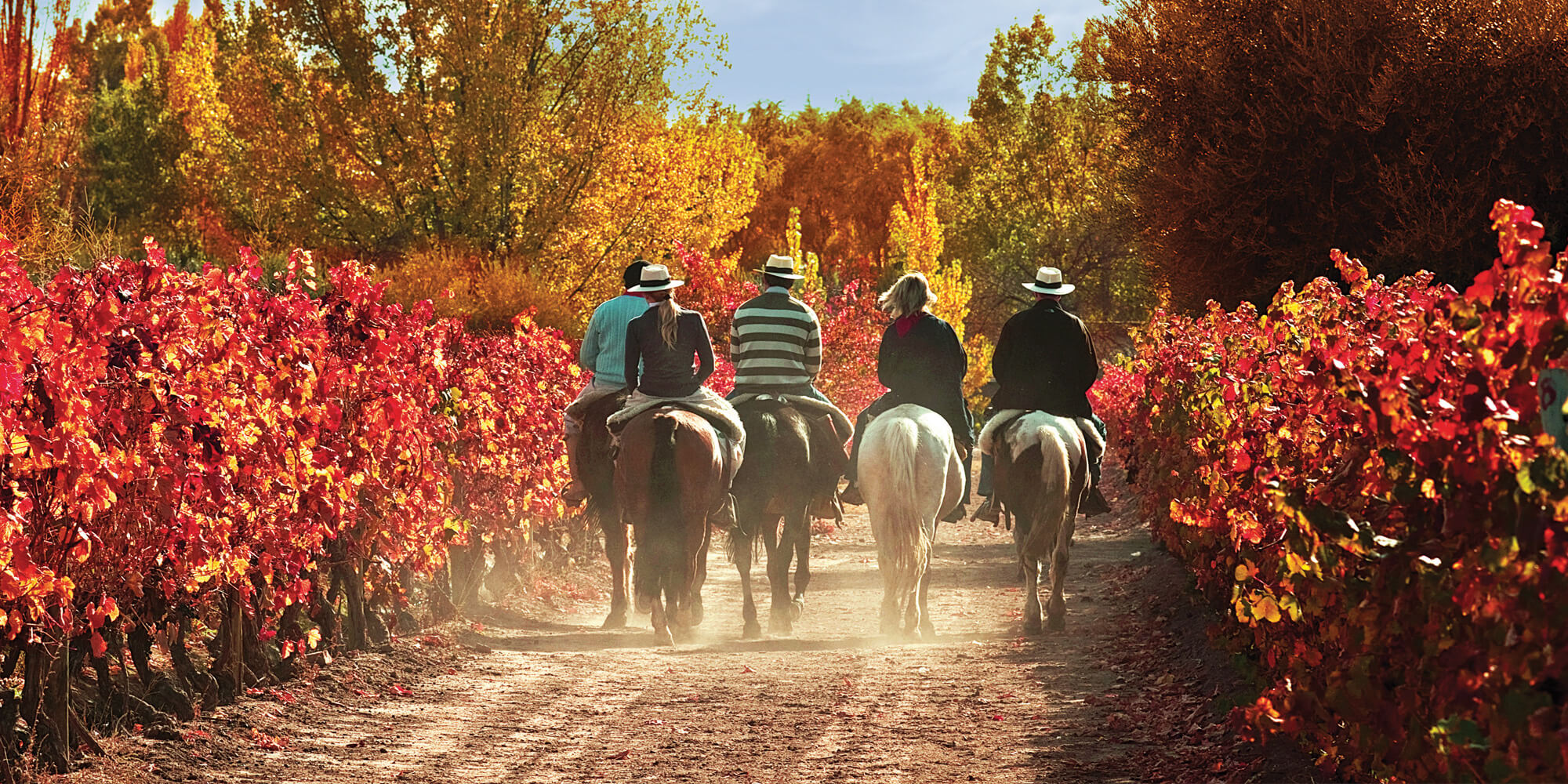Mendoza Adventure and Health Tourism