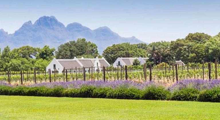 La Motte Wine Estate