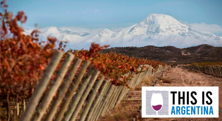 GUIDES TO UNDERSTAND THE ARGENTINEAN TERROIR