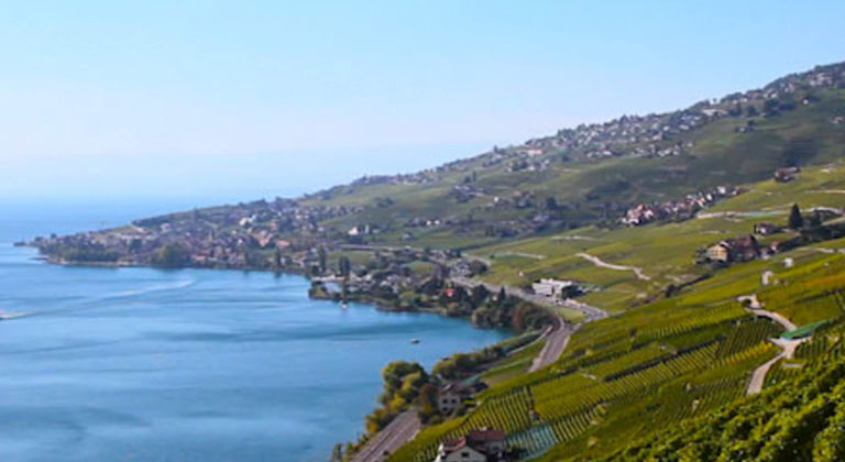 How does Swiss winegrowers work together to get through the coronavirus ?