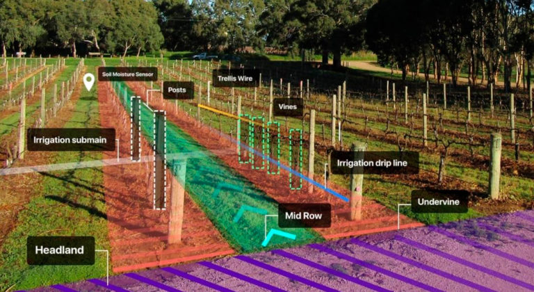 Next generation mapping of vineyards