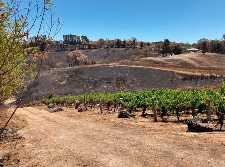 South Australian Christmas Bushfires Part-2