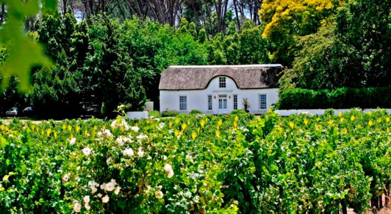 Stellenbosch becomes the first destination in South Africa to be awarded Safe Travels Stamp by the WTTC