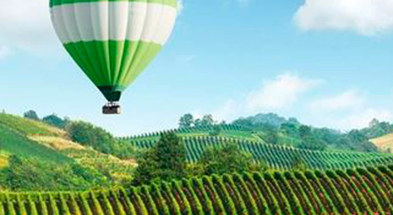 Wine Tourism from one continent to another