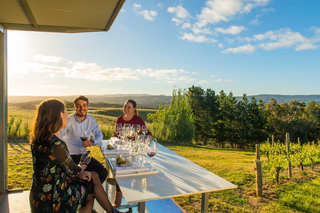 Driving the Future of Wine Tourism