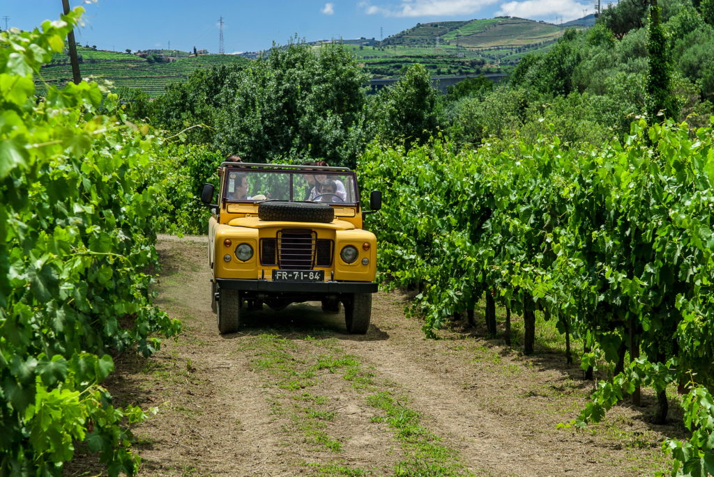 Jeep through the vineyards