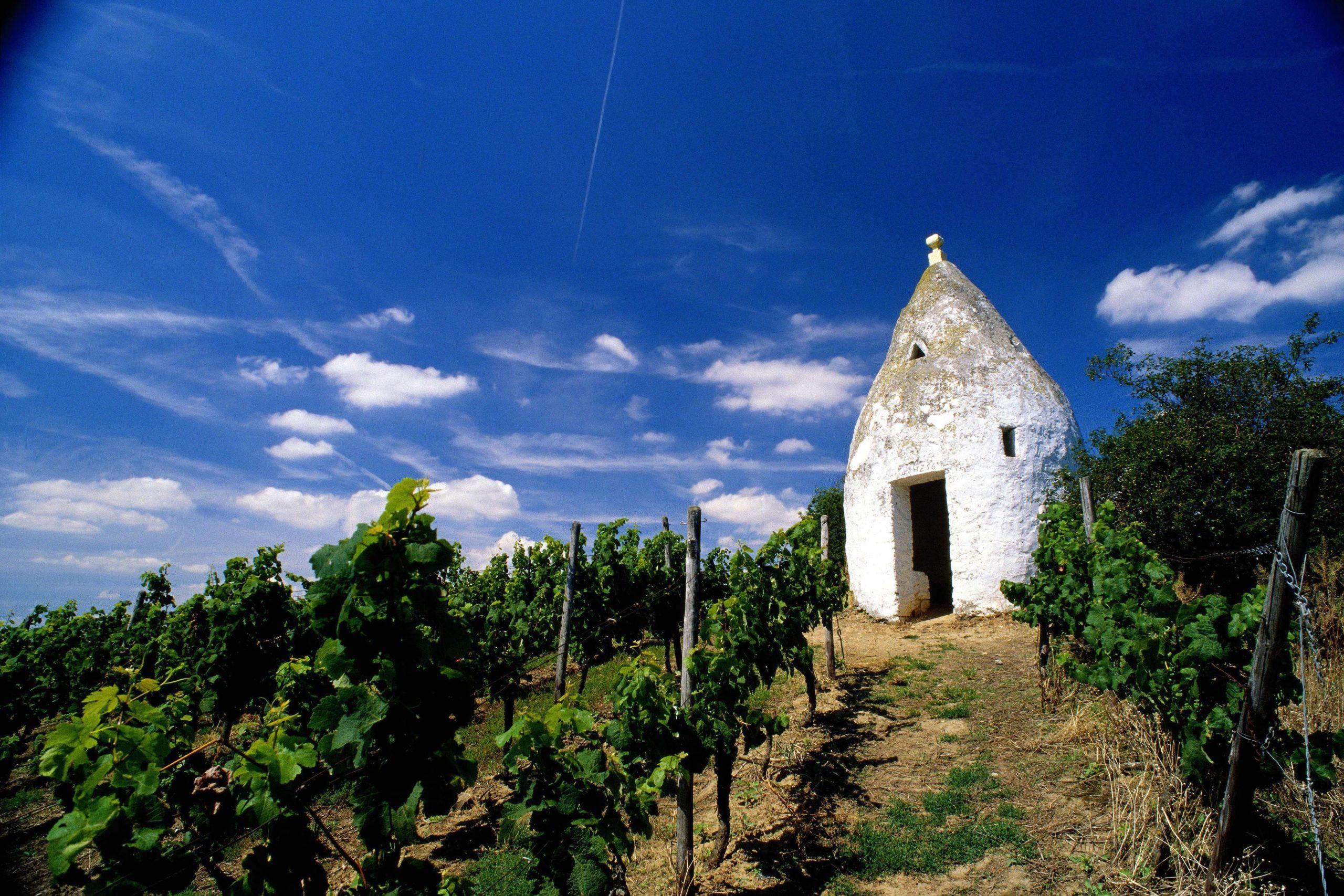 Wein Trullo in Flonheim