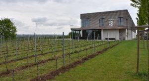 Thörle winery