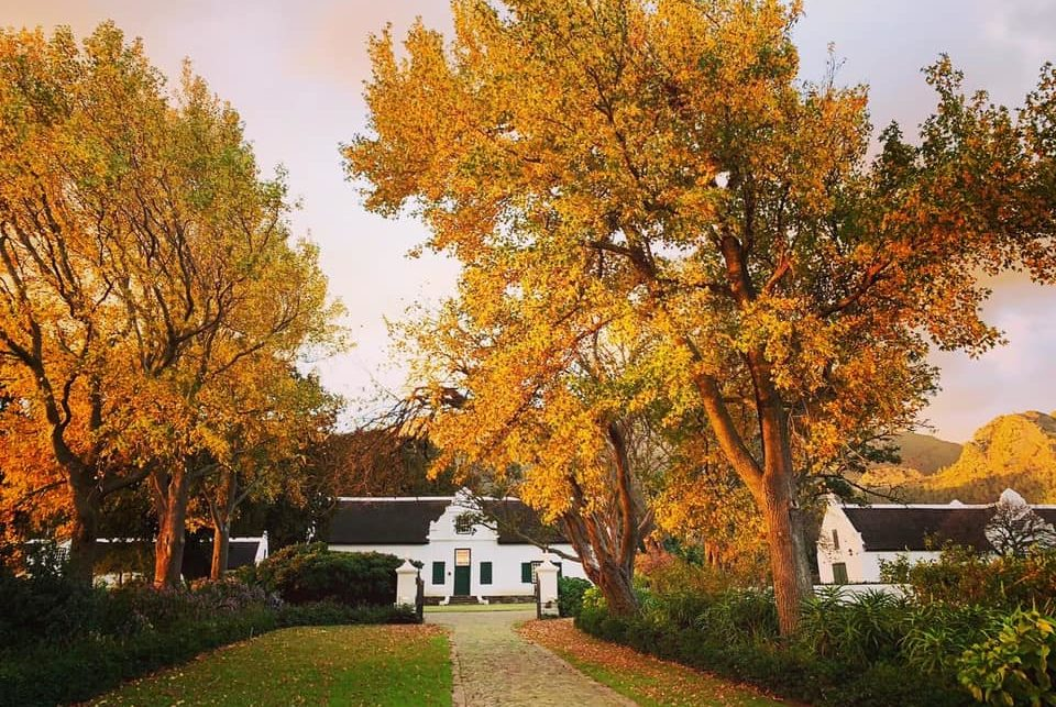 LA MOTTE WINE ESTATE: EXPERIENCE THE FINER THINGS IN LIFE