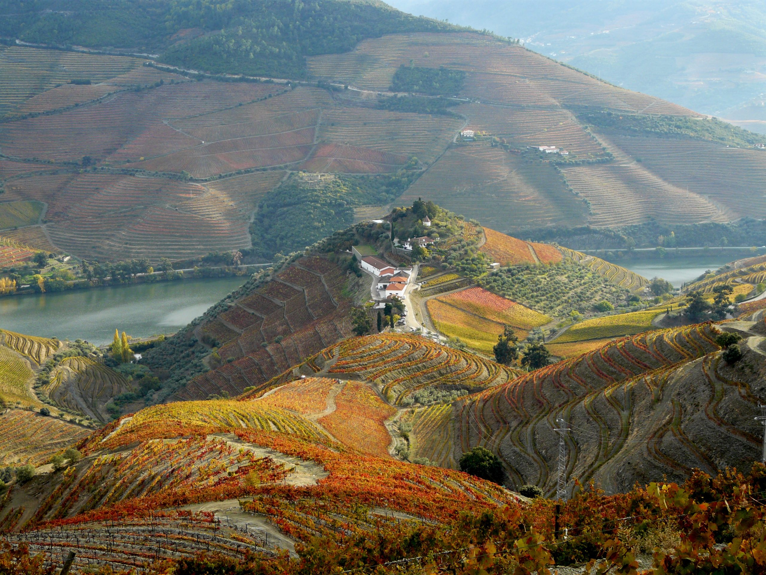 Unveil the Douro Valley Estate awarded Best Of Wine Tourism in Architecture and Landscapes