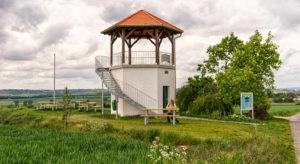 Hiking Rheinhessen - resting place in the green