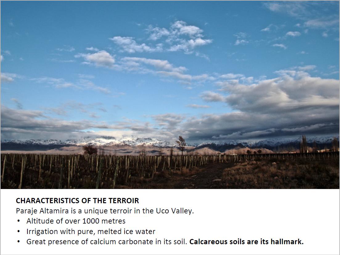 Landscape and characteristics of Paraje Altamira