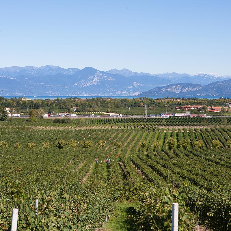 Fraccaroli Garda Lake